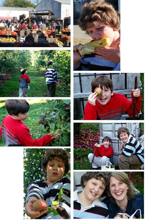 Applecrest_collage